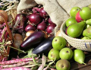 header_eggplant