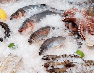 header_seafood